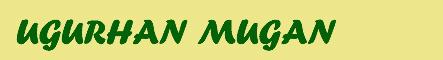 http://www.fen.bilkent.edu.tr/~mugan/web%20page-name.jpg